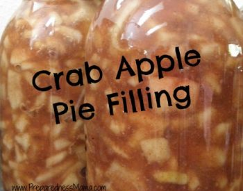 nannas apple pie cooking instructions